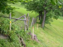 Grenzstreitigkeiten-