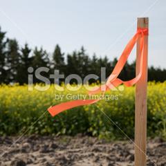 Bauplatzschaffung - Teilung im Bauland-